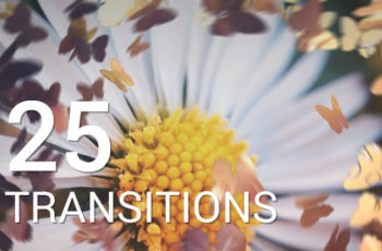Butterflies Transitions - Download Videohive 12016750