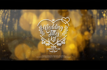 Wedding Titles Kit - 100 Titles - Download Videohive 19434063