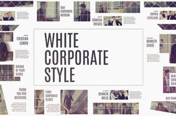 Corporate White - Download Videohive 19316497
