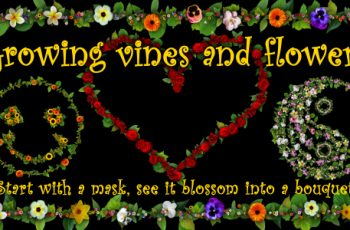 Growing vines and flowers - Download Videohive 19355384