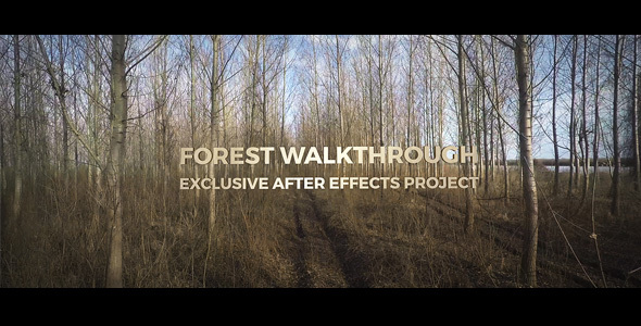 Forest Walkthrough - Download Videohive 15292093
