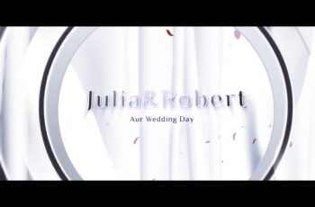 Wedding Opener - Download Videohive 12910634