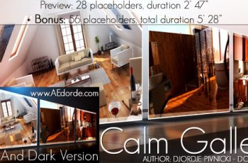 Calm Gallery - Download Videohive 709009