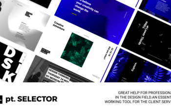pt. SELECTOR - Download Videohive 22532235