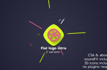 Flat logo intro - Download Videohive 20655869