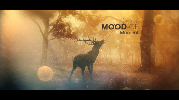 Mood Of Moments Parallax Opener - Download Videohive 20672854