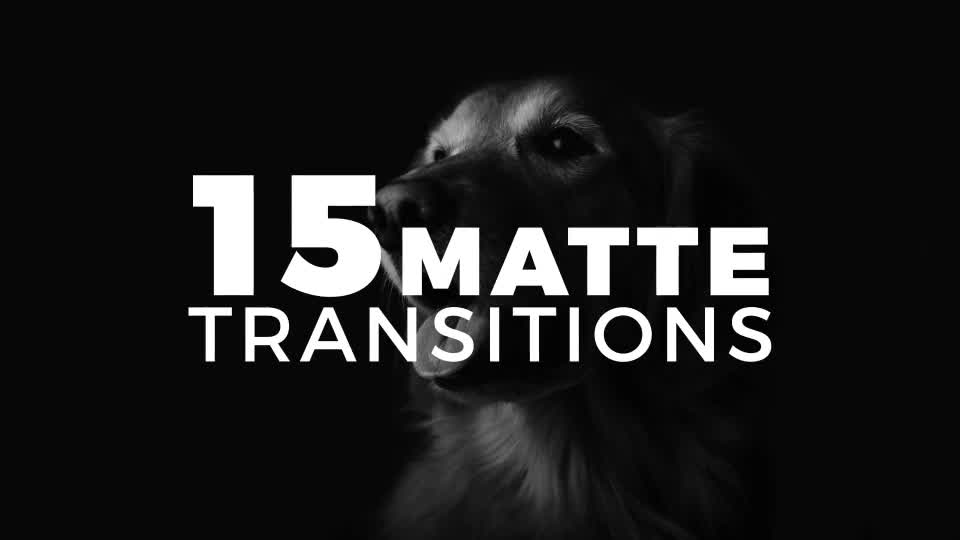 15 Matte Transitions - Download Videohive 18127405