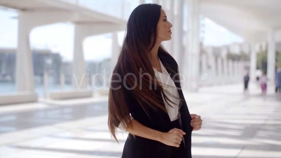 Beautiful Business Woman Standing And Looking  - Download Videohive 13498930