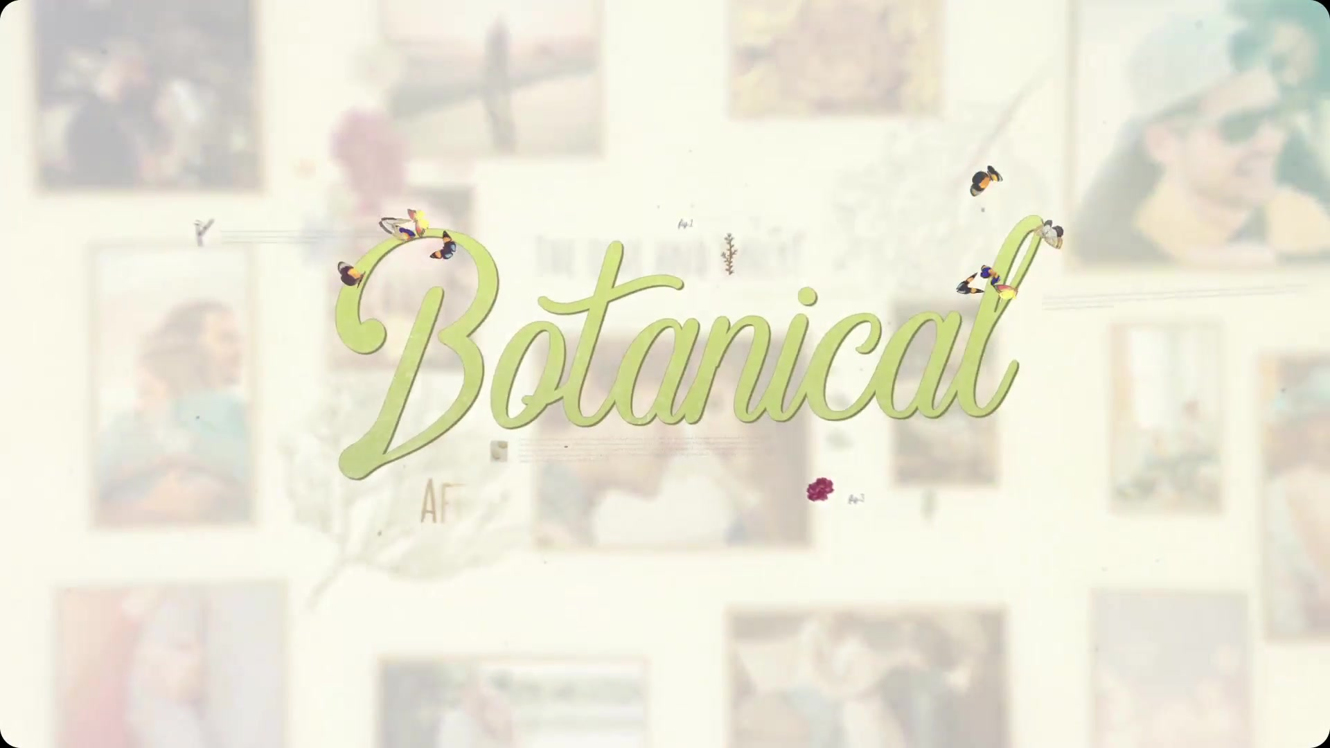 Botanical Slideshow Wedding, Love Story, Family Album - Download Videohive 22525749