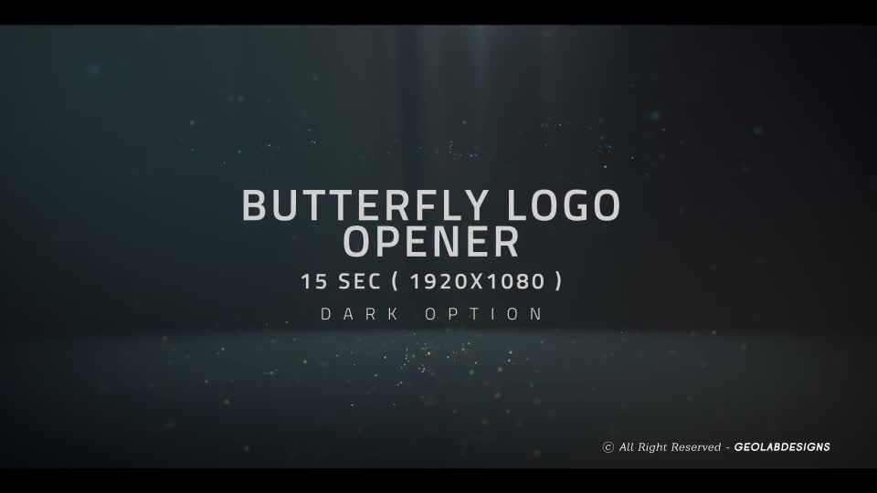 Butterfly Logo Opener l Elegant Logo Opener l Flipping Wings Logo Opener Videohive 25587488 After Effects Image 1
