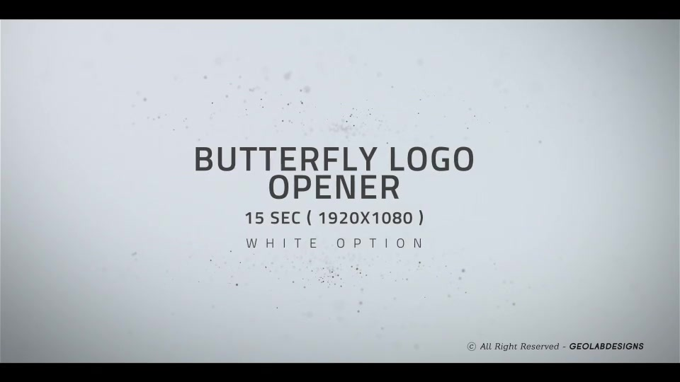 Butterfly Logo Opener l Elegant Logo Opener l Flipping Wings Logo Opener Videohive 25587488 After Effects Image 7