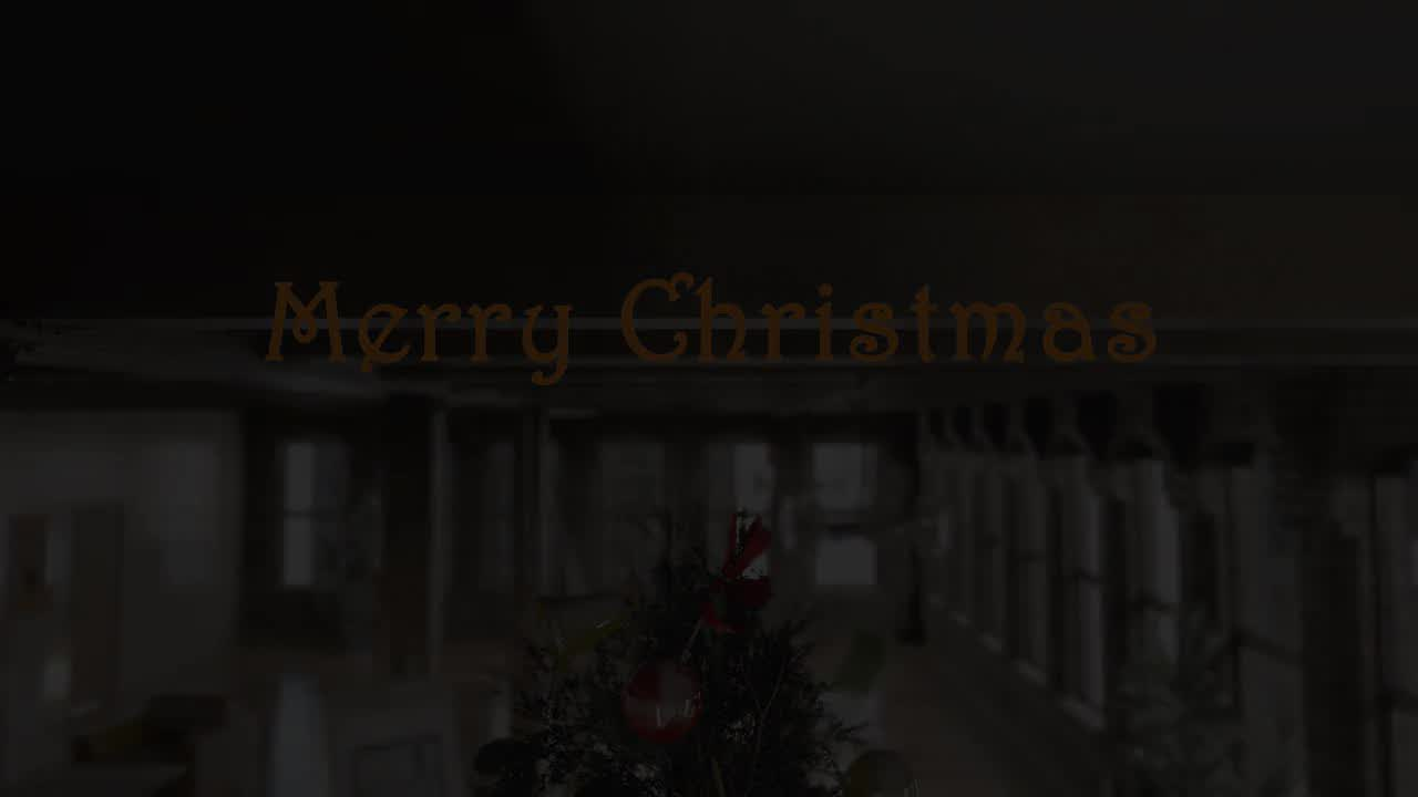 Christmas Tree - Download Videohive 6341620