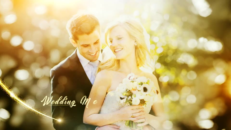 Diamond Wedding - Download Videohive 20069645
