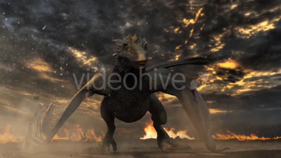 Dragon Logo Reveal - Download Videohive 20408968