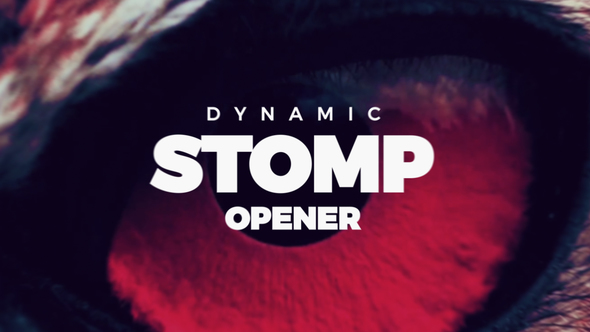 Dynamic Stomp Opener - Download Videohive 21711200