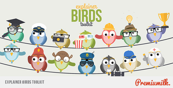 Explainer Birds Toolkit - Download Videohive 11365647