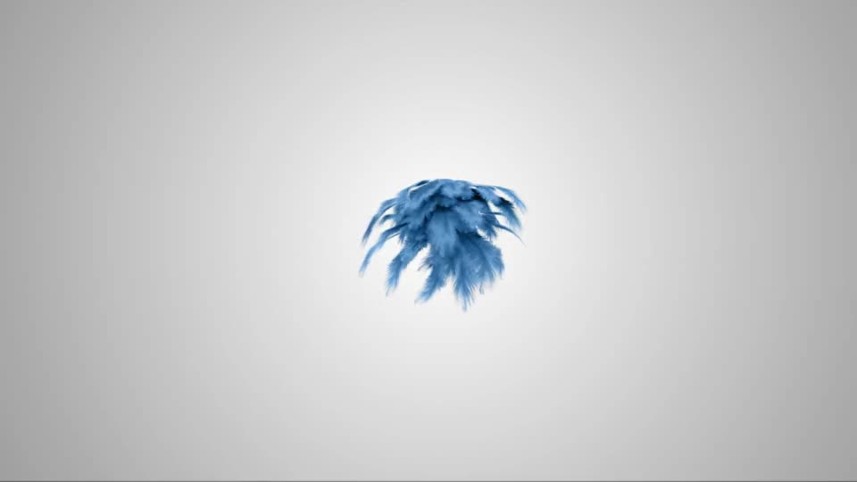 Feathers Logo Reveal - Download Videohive 13902219