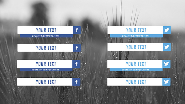 Flat Social Media Lower Thirds - Download Videohive 8560523
