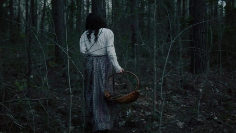 Ghost in the Woods Horror Trailer Premiere PRO Videohive 25553383 Premiere Pro Image 6