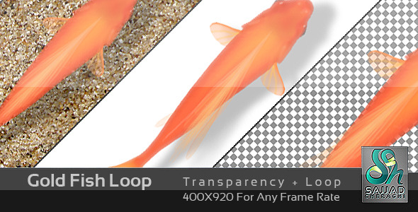 Gold Fish Loop - Download Videohive 682533