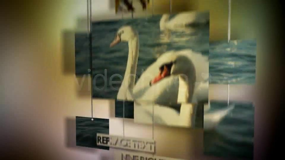 Hanging Photos Montage Videohive 234550 After Effects Image 9