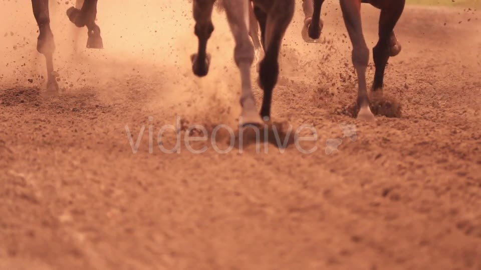 Horse Racing Feet - Download Videohive 18098061