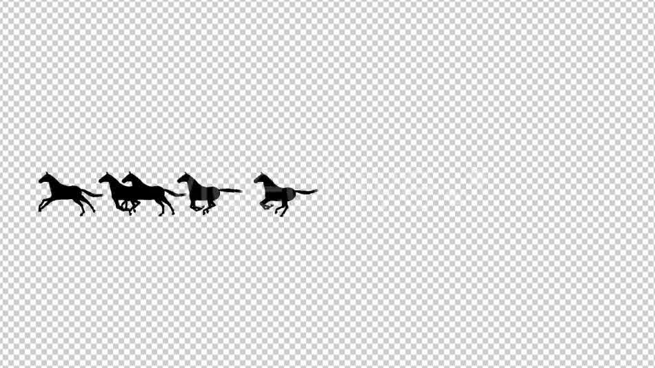 Horses Silhouette Animation - Download Videohive 20510076