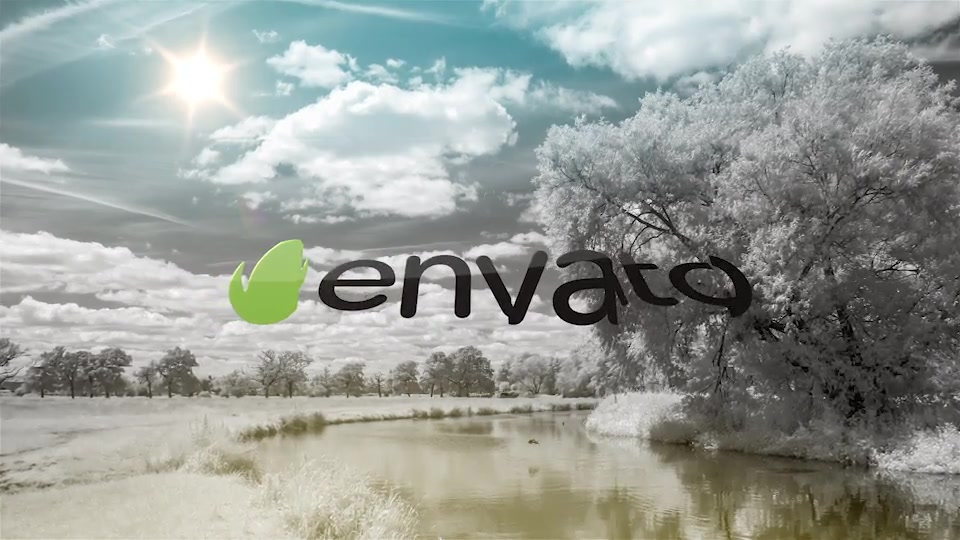 Logo Ident - Download Videohive 19907760