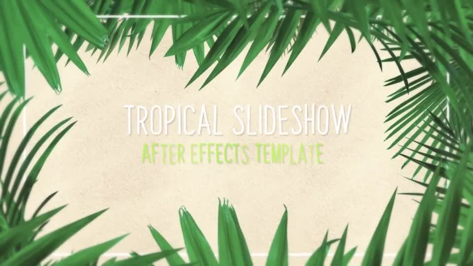 Minimal Tropical Slideshow Videohive 25855642 After Effects Image 1