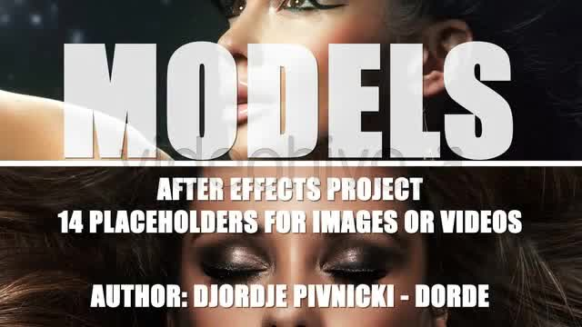 Models - Download Videohive 336297
