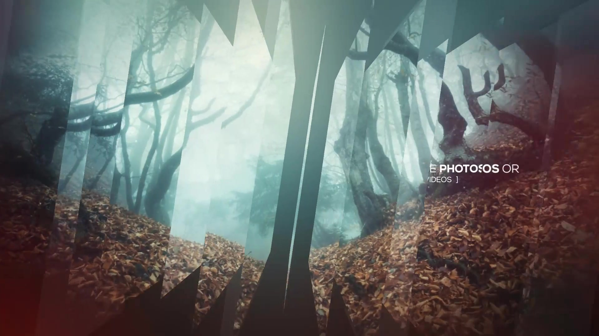 Modern Opener Slideshow II - Download Videohive 19115070