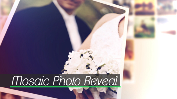 Mosaic Photo Reveal - Download Videohive 11419150