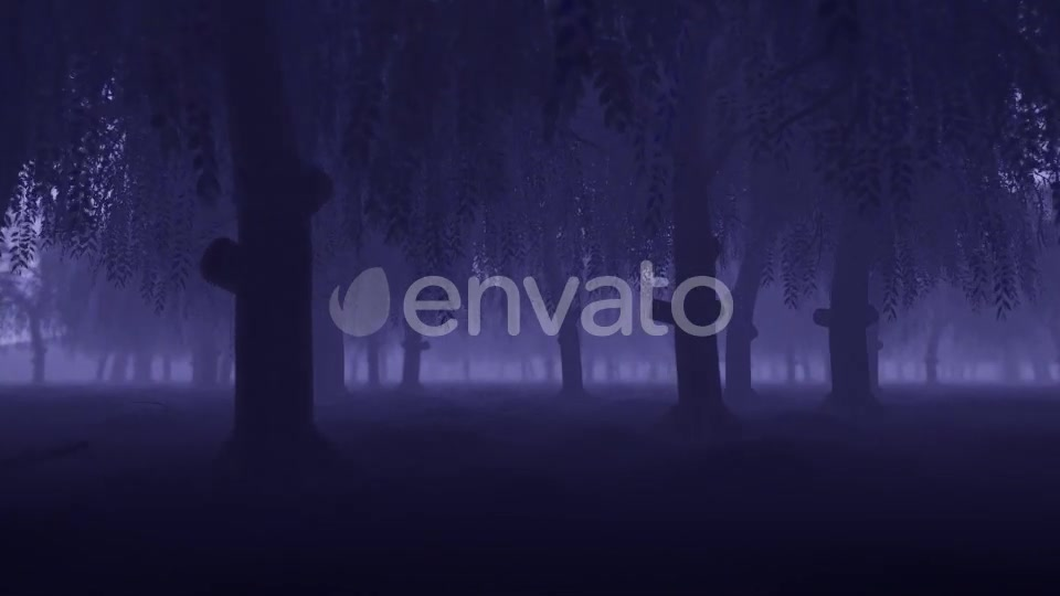 Mystery Forest - Download Videohive 22022530
