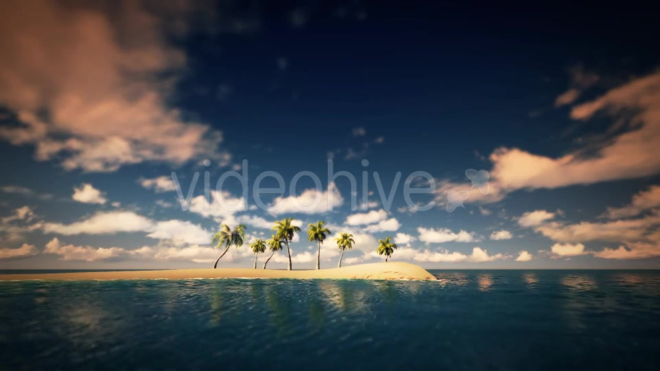 Palms And The Beach Noon - Download Videohive 16247651