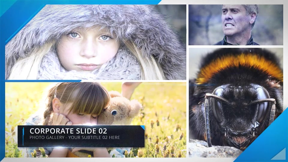 Photo Gallery - Download Videohive 13836130