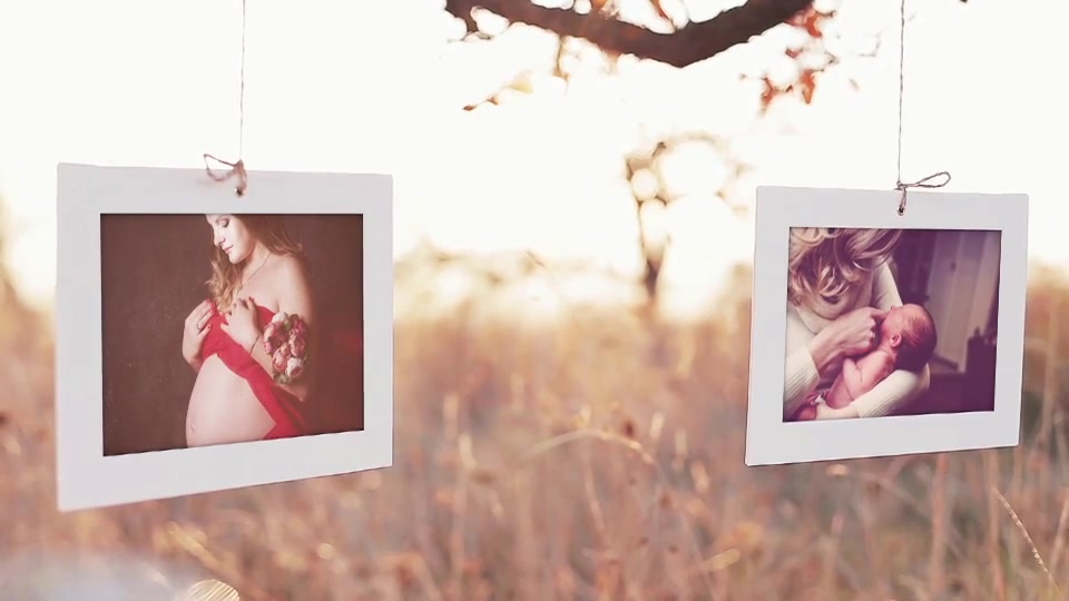 Photo Gallery Intro Pack - Download Videohive 17075690