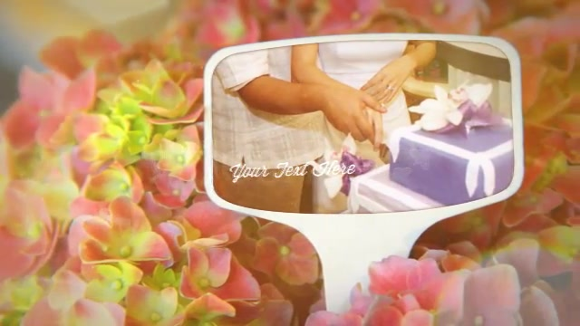 Photographs and Memories Bloom - Download Videohive 4974510