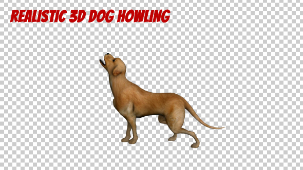 Realistic 3D Dog Howling Animation - Download Videohive 19902822