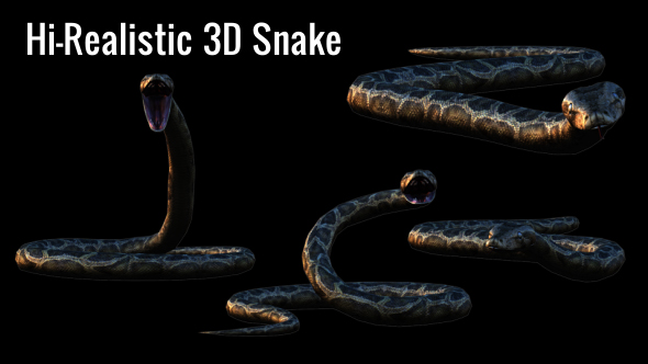 Realistic 3D Snake Animations Pack - Download Videohive 18294425