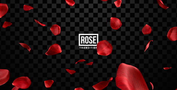 Rose Transitions - Download Videohive 19427108