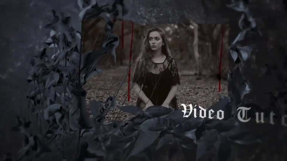 Scary Slideshow - Download Videohive 22690411