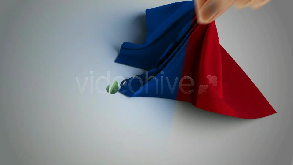 Silk Shawl Logo Reveal - Download Videohive 841303