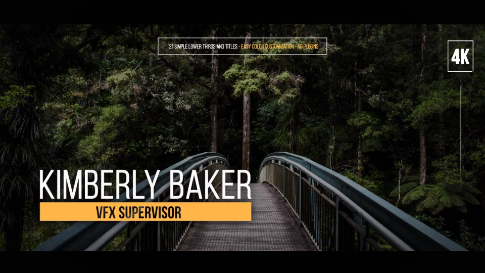 Simple Lower Thirds For FCPX - Download Videohive 19700204