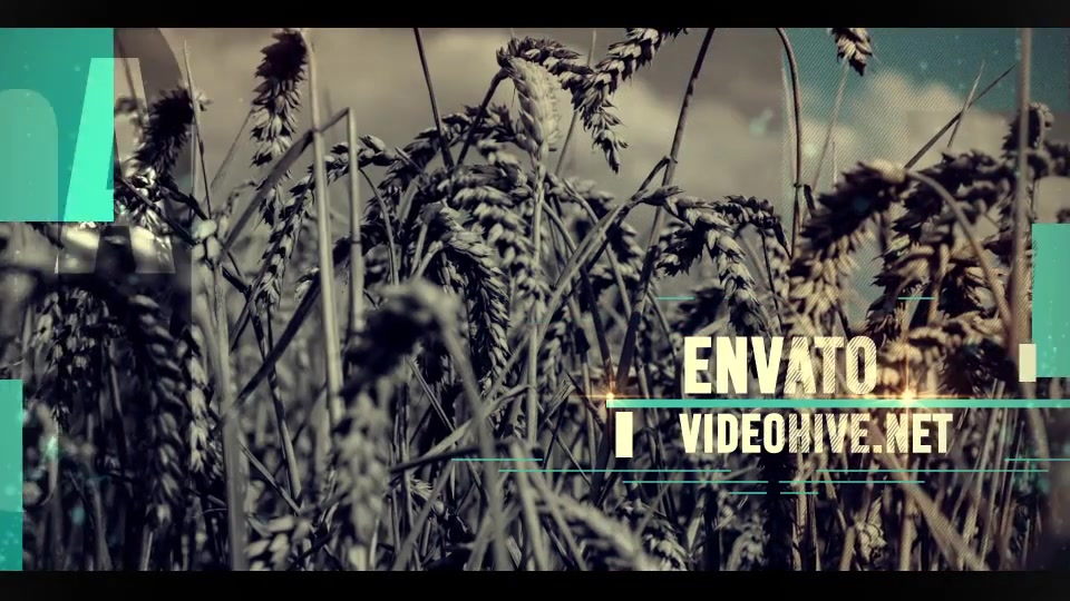 Simple Opener - Download Videohive 16311480