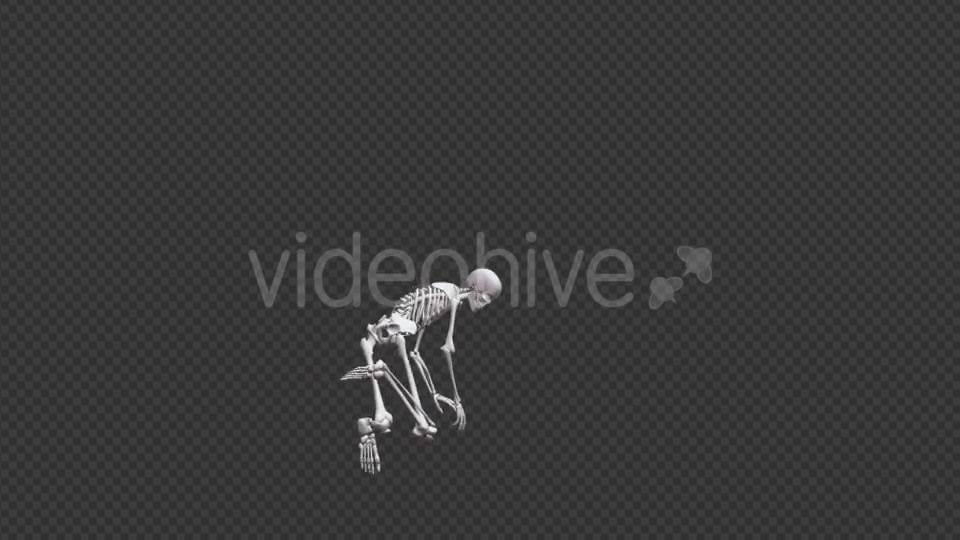 Skeleton HipHop Dance - Download Videohive 17467935