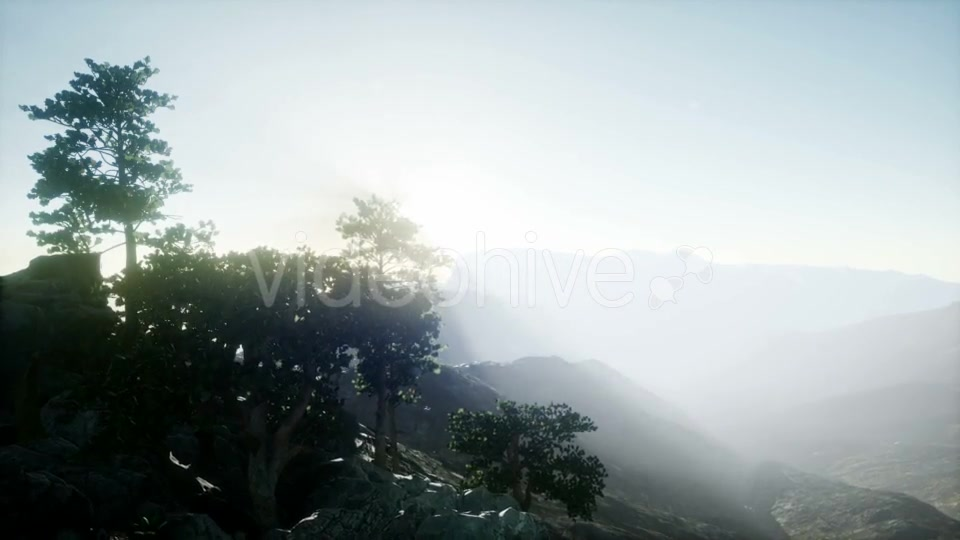 Sun Beams Through Trees - Download Videohive 21297417