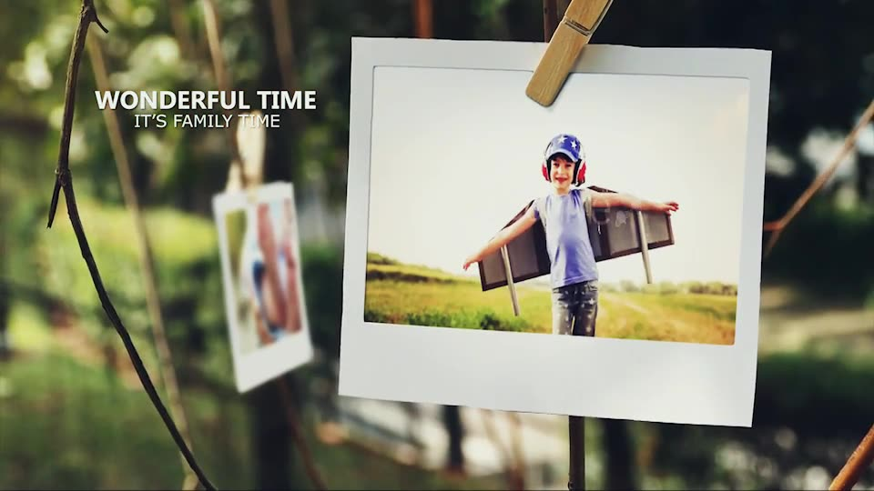 Tree of Life Photo Gallery - Download Videohive 15795143