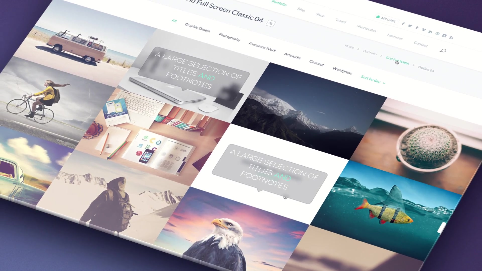 Website Presentation Pack - Download Videohive 16648358