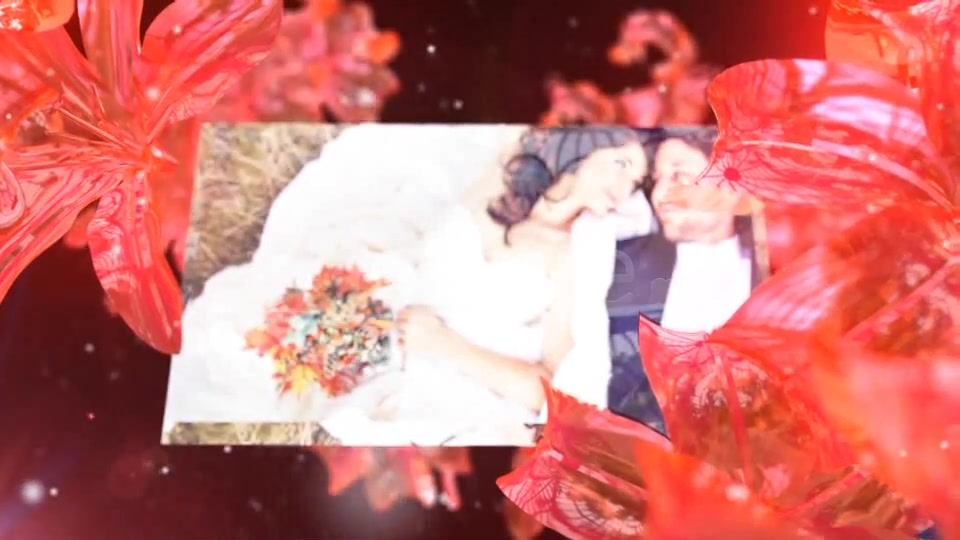 Wedding Fairy - Download Videohive 5251521