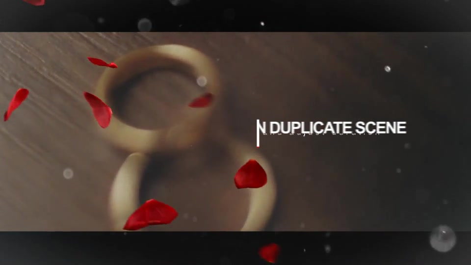 Wedding Intro - Download Videohive 14584906